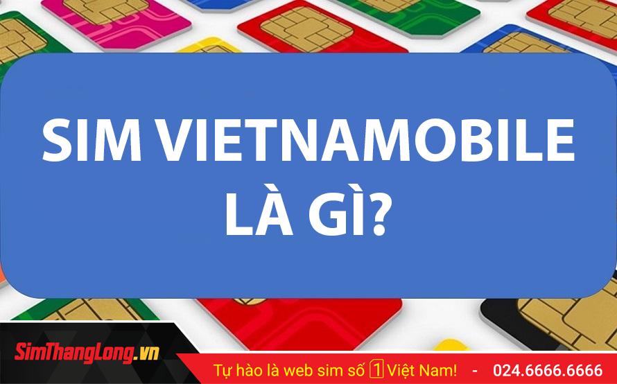 sim-vietnamobile